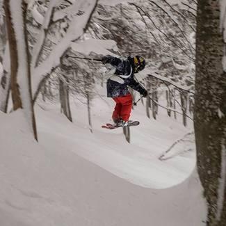 WHO ELSE LOVES TREE SKIING IN JAPAN /Kelly & Henry Sildaru/ Vlog2-18