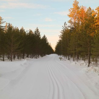 Alutaguse Maratonil lund pool meetrit! Korraldajad ootavad miinuskraade, et saaks hakata rada viimistlema!